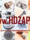Ремкомплект гидроцилиндра подъема кузова Hyundai HD 270